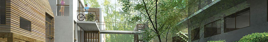 cropped-mlv-1-banners.jpg