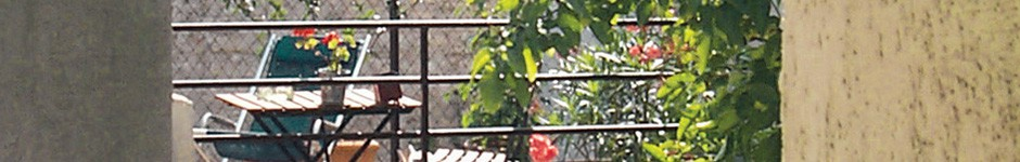 cropped-pey-2-banners.jpg